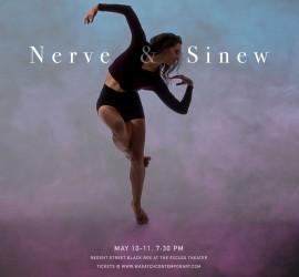 Nerve&Sinew-Print